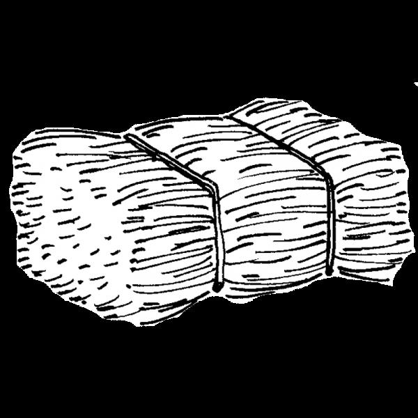 Olkipaali